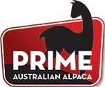 Prime Australian Alpaca Logo
